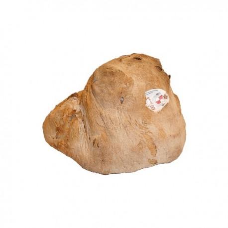 Pane di Altamura DOP (alto)